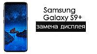 Замена дисплея samsung s9 plus