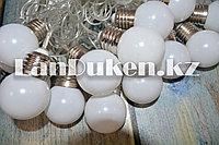 Светодиодная гирлянда Digital Light Series LED тёплый белый свет (20 лампочек 5 метров)