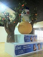 Оформление стенда на выставке по индивидуальному заказу, фото 1
