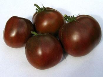 Семена томата Черный принц