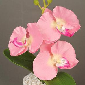 Декоративная композиция-вазон Орхидеи, фото 2