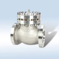 Nuclear Check Valve
