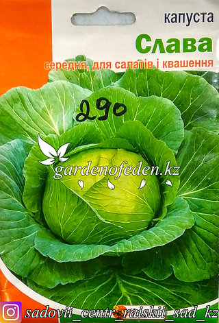 """Семена пакетированные Яскрава. Капуста белокочанная """"Слава"""", фото 2"""