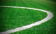 Укладка футбольного газона Limonta