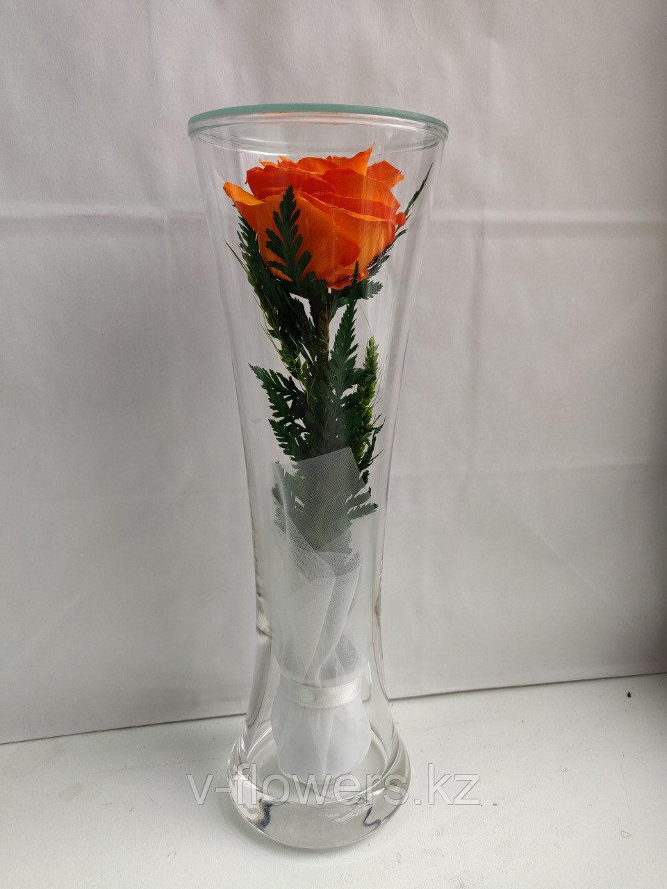 Живые цветы в стекле CuHRo