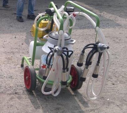 Турецкий доильный аппарат Agrolead 1 бидон 2 пульсатора