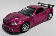 554003 5  DIE CAST CHEVROLET CORVETTE C6.R (006064)
