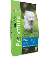 Pronature Original NEW Сухой корм для взрослых собак всех пород (с курицей и овсом) 340 гр