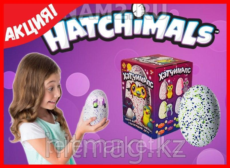 Hatchimals - Пингвинчик или Дракончик - интерактивный питомец