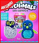 Hatchimals - Пингвинчик или Дракончик - интерактивный питомец, фото 3