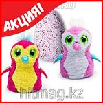 Hatchimals - Пингвинчик или Дракончик - интерактивный питомец, фото 5