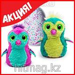 Hatchimals - Пингвинчик или Дракончик - интерактивный питомец, фото 6