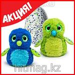 Hatchimals - Пингвинчик или Дракончик - интерактивный питомец, фото 7