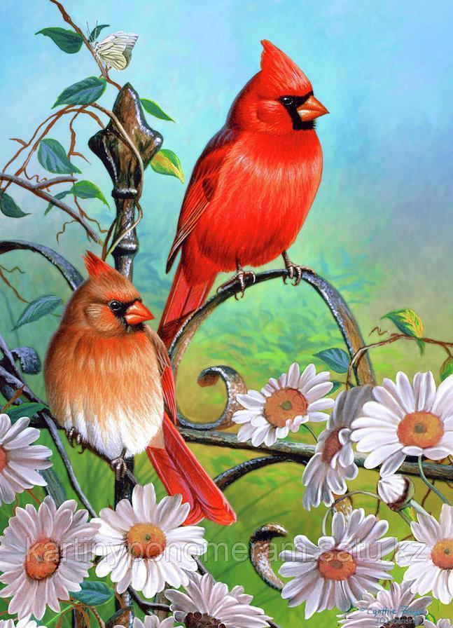 """Картина по номерам """"Птицы в цветах"""""""