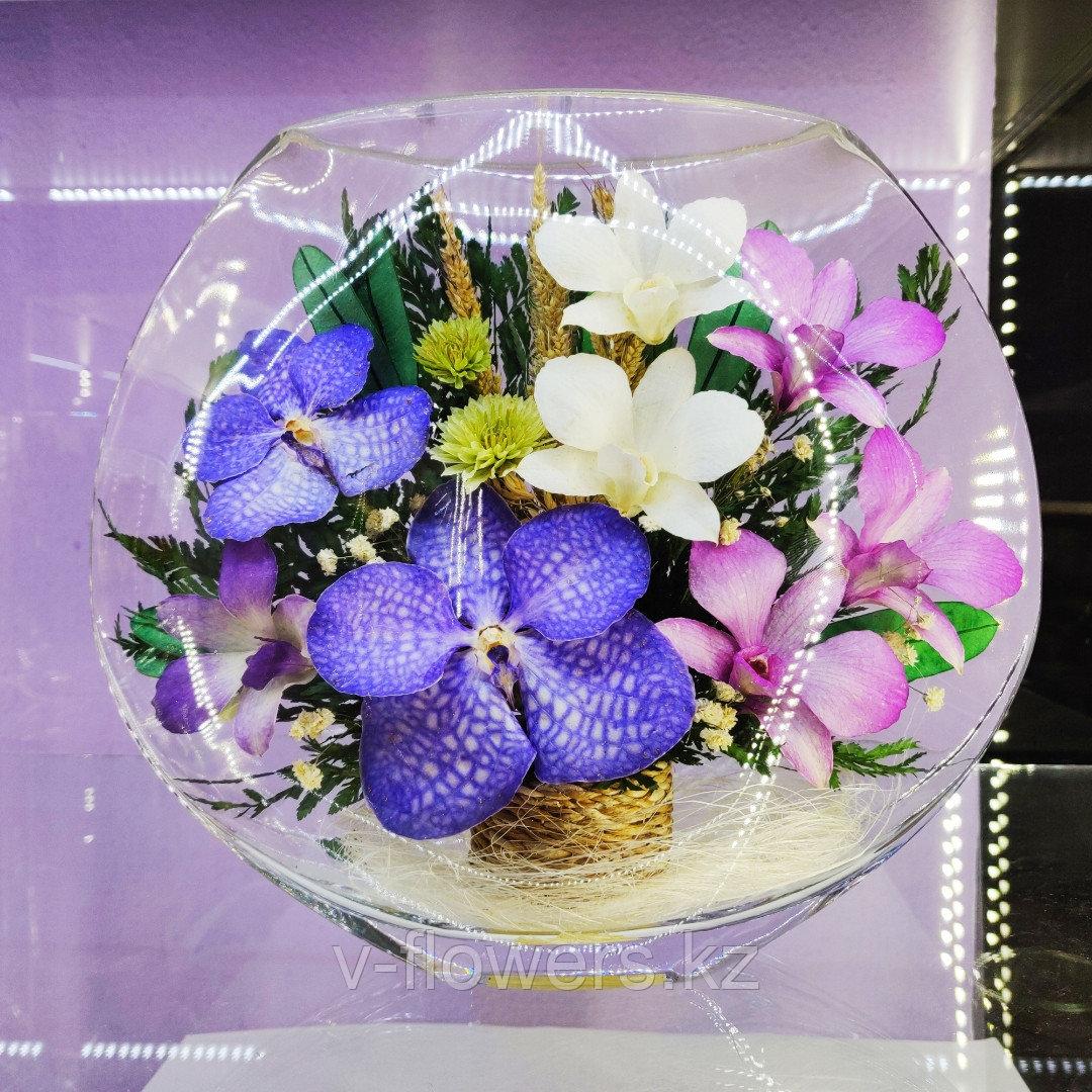 Вечные живые цветы EMO-N1