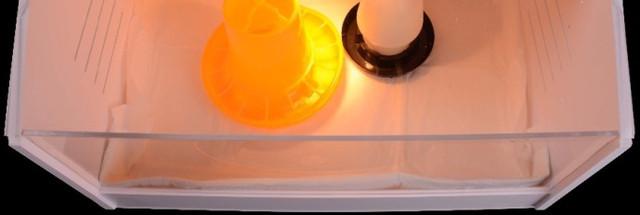 Передняя стенка и крышка в данной модели выполнены из прозрачного пластика