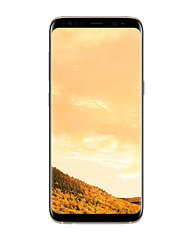 Смартфон Samsung  Galaxy S8 64Gb
