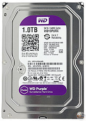 Жесткий диск HDD 1000Gb Purple Western Digital