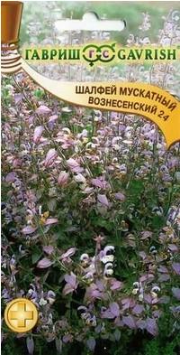 Семена. Шалфей мускатный «Вознесенский 24»