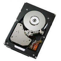 "Express 2TB 7.2K NL SATA 3.5"" Simple-Swap HDD (42D0787)"