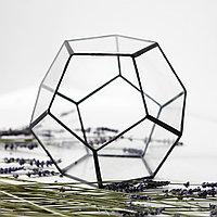 Флорариум в форме додекаэдра