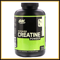 ON Creatine Monohydrate 600гр