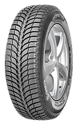 195/55 R15 Sava Eskimo Ice MS XL FP 89T
