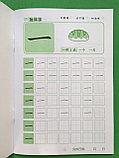 Прописи для написания иероглифов для детей. Уровень 1., фото 2