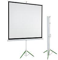 Переносной проекционный экран ECO 173см*173см, фото 1