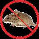 Защита от мышей, фото 2