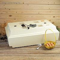Инкубатор бытовой «Золушка», на 98 яиц, автоматический переворот, 220 В