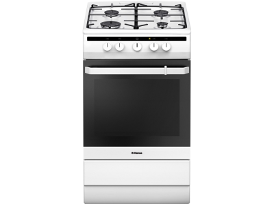 Кухонная плита Hansa FCGW51001