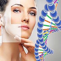 Почему пептид Аматокин важен для стареющей кожи?